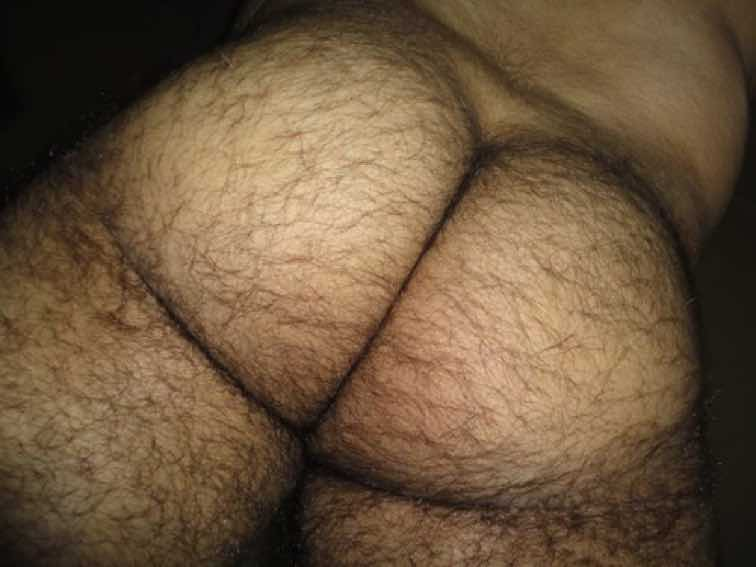 гей видео волосатые задницы